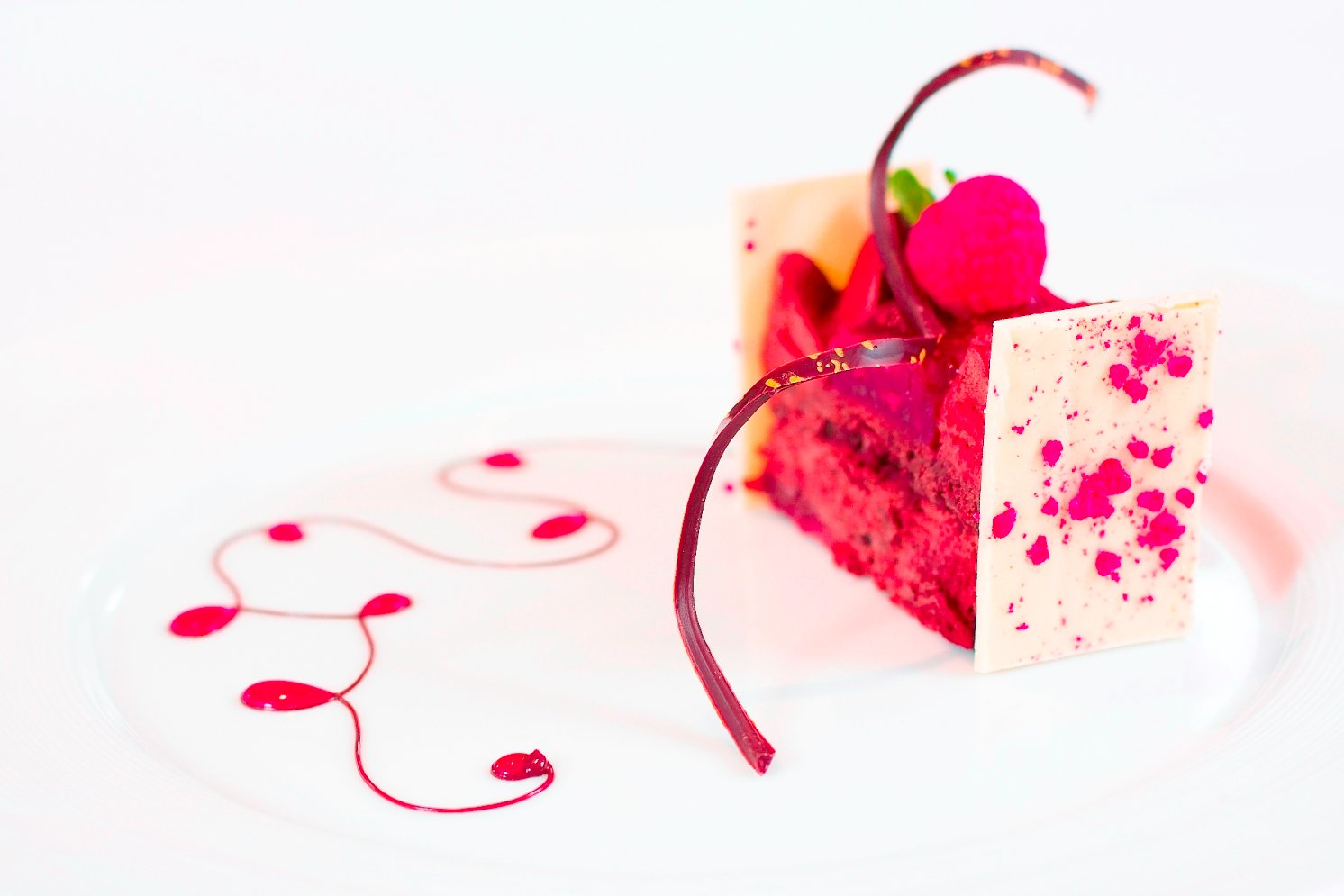 Le Cordon Bleu Chocolate and Raspberry Square, from Le Petit Larousse du Chocolat
