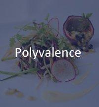 polyvalence chef cuisinier