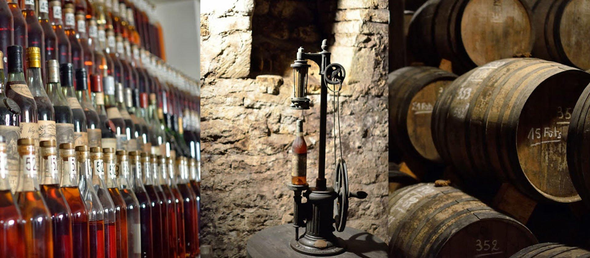 visite vignoble Cognac