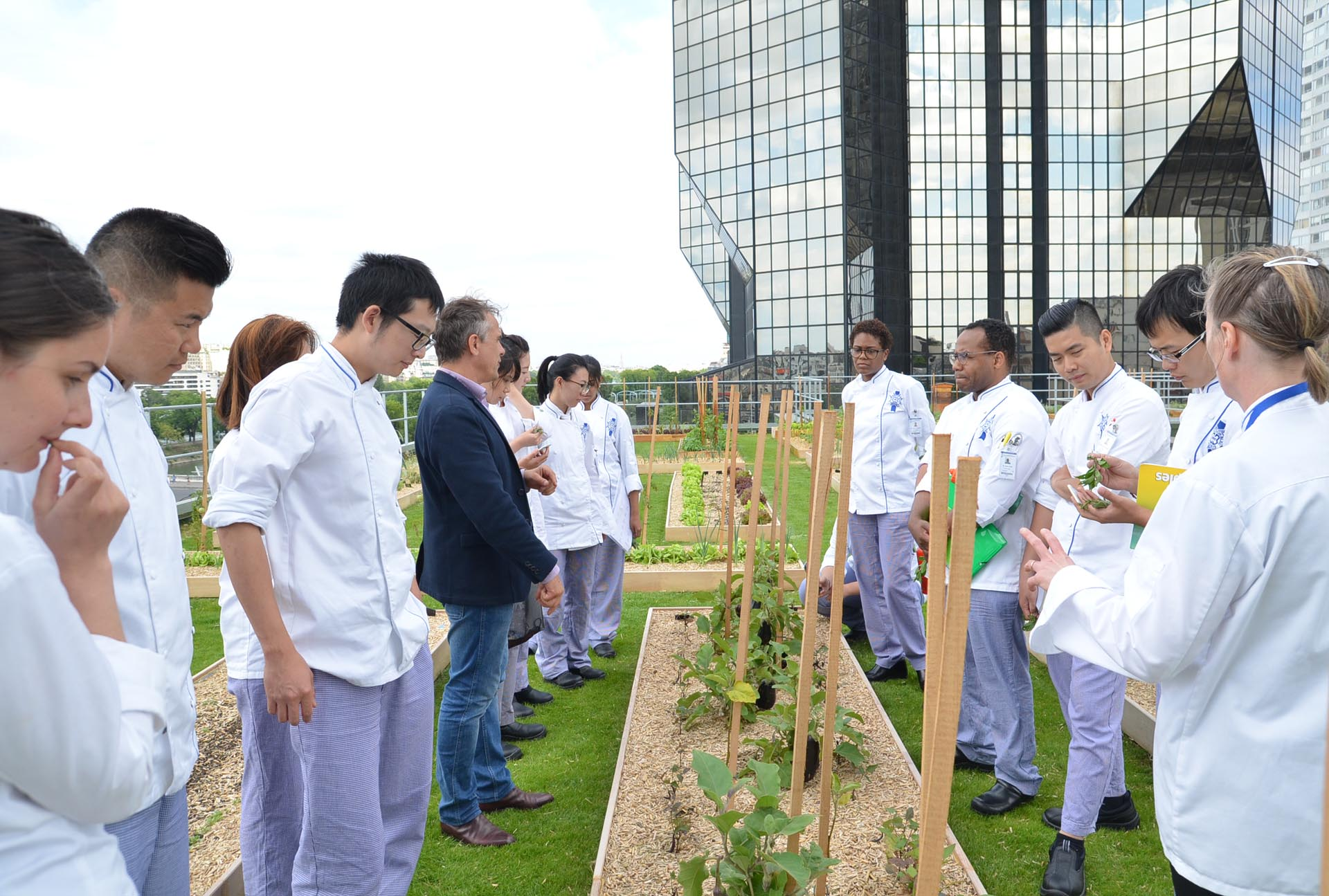 Vegetable garden lesson at Le Cordon Bleu Paris