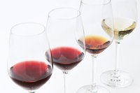 Wine studies course