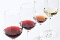Wine studies course