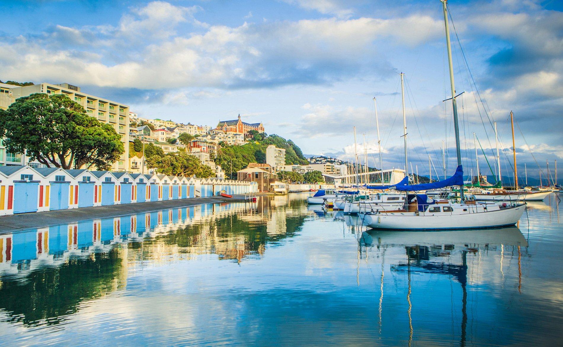 10 Reasons To Study In New Zealand Le Cordon Bleu