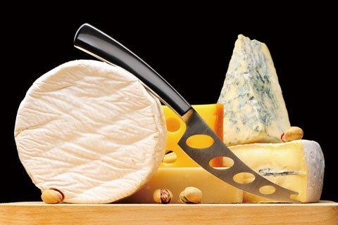 チーズ検定講座