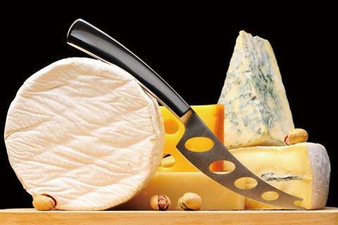 チーズの世界を深く専門的に学ぶ