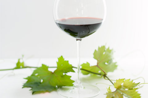 Wine evening class onenology