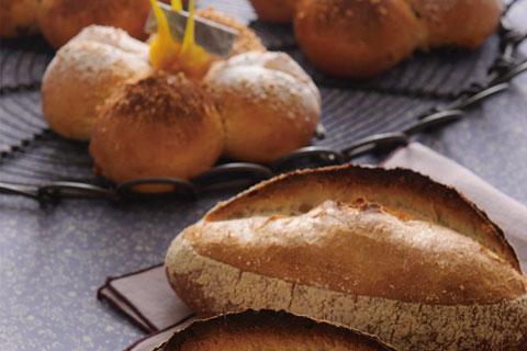 ワークショップ 製パンの基本実技