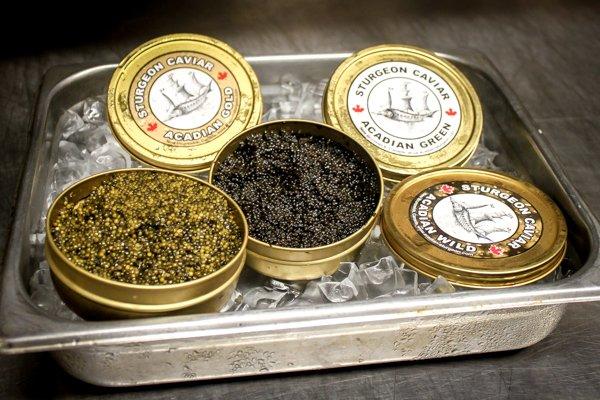 Caviar Seminar - Le Cordon Bleu Ottawa