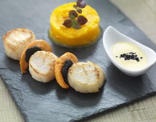 Recipe - Seared scallops with truffle shavings, butternut squash purée, creamy sauce with truffle