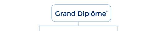 Le Grand Diplôme - Cuisine and Patisserie qualification - London